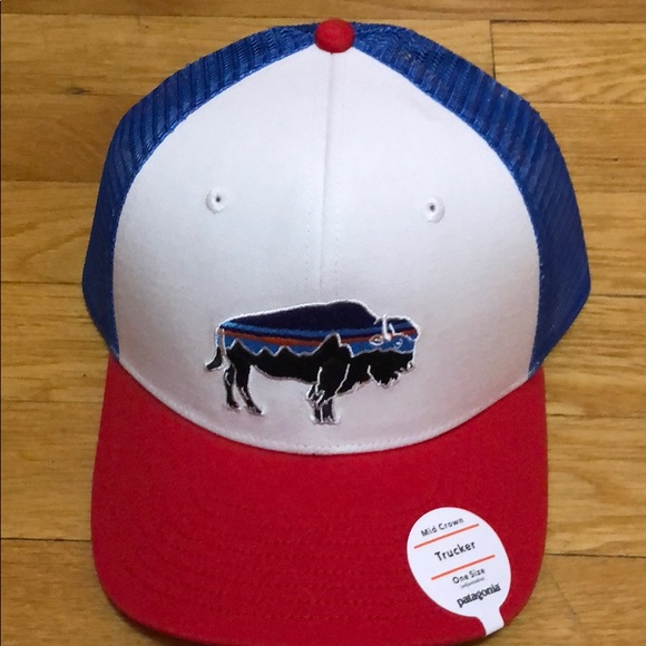 02b764bf Patagonia Accessories | Fitz Roy Bison Trucker Hat New | Poshmark